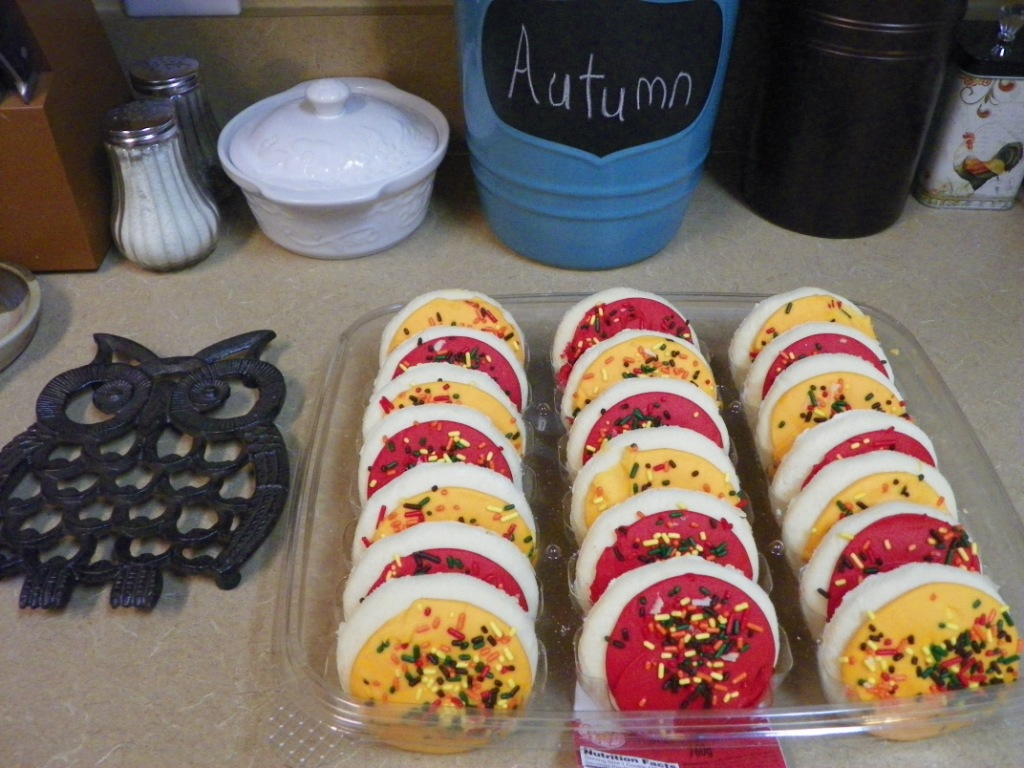 Fall cookies and owl trivet