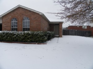 snow at home 5